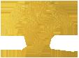 معماری و دکوراسیون داخلی مسعود زمانیها Logo